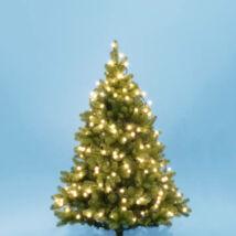 Home LED-es gömb opál fényfüzér 50 db meleg fehér LED KII 50B/WW  Somogyi